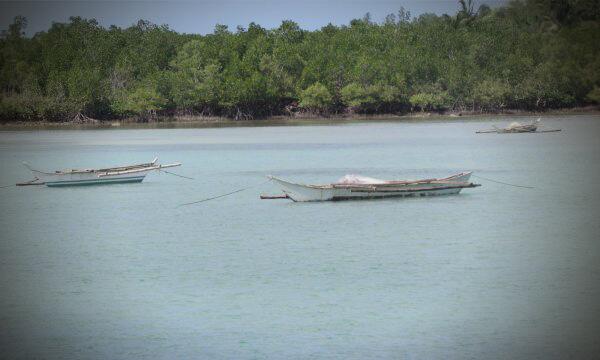 Hilfe für die Philippinen: Wer schützt das Paradies?