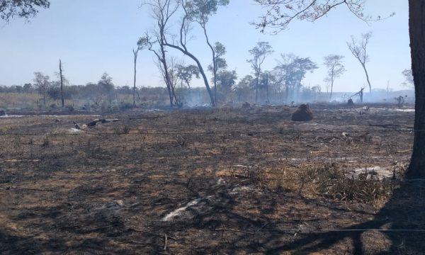 Flammenhölle Amazonas - Nothilfe für die Menschen im Amazonasgebiet von Bolivien