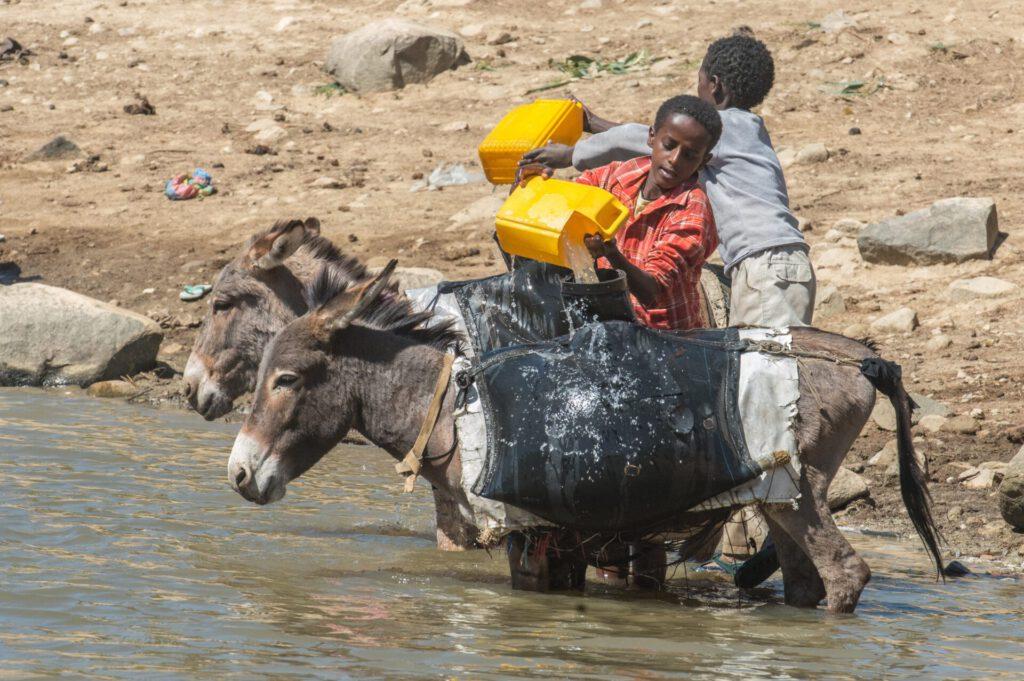 eritrea-4919112