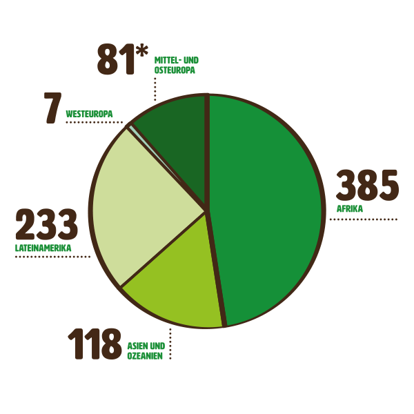 mzf_diagramme_web_Projekte-nach-Region_2020
